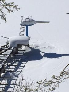 sneeuwbad
